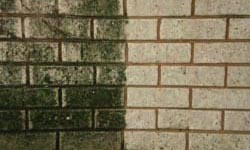 Pressure Cleaning Perth Brick Walls Before/After